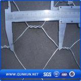 Aço inoxidável 0,3mm x30mm de malha de arame hexagonal na venda