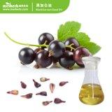 Важное значение 100% чистого масла природных органических медицинского ухода за кожей пищевых сортов масла семян черной смородины