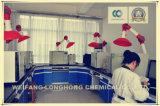 Additif alimentaire Gluconate de sodium / Gluconate de sodium de la FCC / Gluconate de sodium / alcool industriel / Additif de béton