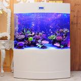 Grande sala de estar Água Troca Free Acrylic Eco Fish Tank