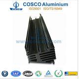 Aangepast 6000 Reeksen de Uitdrijving van het Aluminium/van het Aluminium voor Radiator