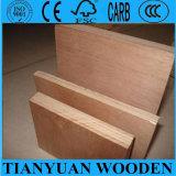 Muebles y madera contrachapada de lujo de Bintangor del uso de la decoración