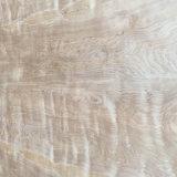Material da decoração da madeira compensada do vidoeiro branco de C/D1220mm*2440mm
