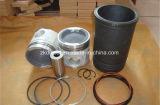 Kolben-Installationssatz 3806219 Cummins-B3.3 für Zylinder des Cummins-Dieselmotor-4