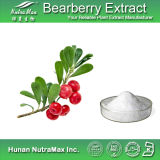 Busserole Leaf Extract 99% Arbutin Used pour Personal Care
