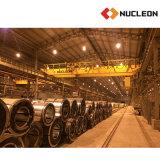 Solução resistente do guindaste aéreo de 30 toneladas para a indústria da tubulação de aço