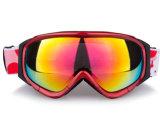 Auswechselbarer gelüfteter PC polarisierter Ski Sports Schutzbrillen