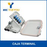 Caja Terminal O Caja de Distribucion con 8 Salidas SC/APC