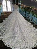 Aolanesの完全な袖の一義的なレースのカテドラル宮殿のウェディングドレス