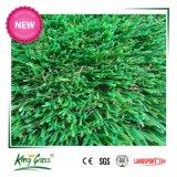 庭の装飾のための景色の総合的な草