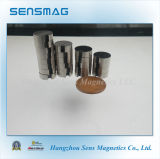 常置焼結させたアルニコシリンダー磁石
