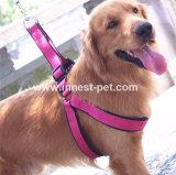 Duurzame Halsband en Leiband voor Grote Honden