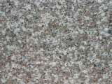 Nuovo sostituto di sorgente della cava del granito per il simile Neu Granito rimontaggio di G664 /G687