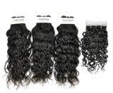 Вьетнамских Французская волна необработанные Virgin для волос (Категория 9A)