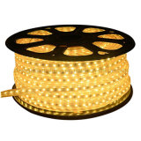 Migliore indicatore luminoso di striscia flessibile di illuminazione 12V/24V RGB LED del LED SMD5050 IP67