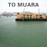 Serviço de logística de transporte de Guangzhou para Muara