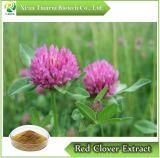 Extrait de trèfle rouge/Trifolirhizin