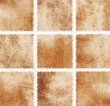Baldosas cerámicas de la inyección de tinta de la serie de la red