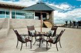 Tableau extérieur/de jardin/patio rotin/fonte d'aluminium avec le dessus de table HS7603dt