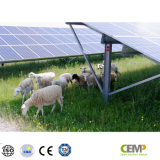 Comitato solare approvato alta tecnologia 290W di Monocrystyalline