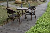 Presidenza dei bistrot della mobilia del giardino & Tabella HS30119c&HS20077dt stabilito