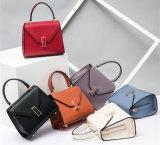 女性トートバックの専門のハンドバッグの女性ハンドバッグの女性のトートバックのSholder袋の方法革ハンド・バッグデザイナーハンドバッグの新式のトートバック(HD0600148)