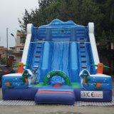 Гигантские индивидуальные гигантские надувные двойной слайд для детей