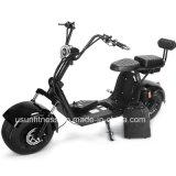 Scooter met Krachtige Groene Brushless Motor 1500watt voor Volwassene