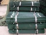 Type T Poteaux de clôture/ métal galvanisé poteaux de clôture