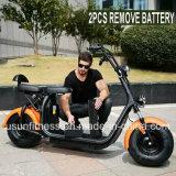 Pneu de gordura nas duas rodas Scooter eléctrico com bicicletas e remova a bateria