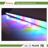LED Keisue croître de lumière pour la production de poulet/Turquie