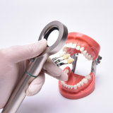 軽い基礎ライトに一致させるB1uuの歯科陰