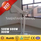 500W si dirigono il sistema di generatore di potere di /Wind della turbina di vento di uso (500W)