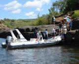 Barca gonfiabile rigida di Liya 6.6m con Ce da vendere