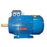 IEC 공기 압축기를 위한 세륨 증명서를 가진 표준 MS 모터