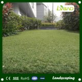 실내 풋볼 투수를 위한 프로 스포츠 인공적인 잔디