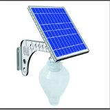 Éclairage LED solaire pur de jardin de Wuite 15W