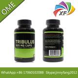 La testostérone et l'hormone de Terrestris de Tribulus améliorent la forme physique de muscle