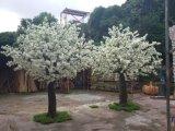 Plantas e flores artificiais da árvore de cereja Gu-SL4009134