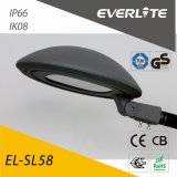 Everlite 100W LED Straßenlaternemit TM21 Lm79 ENEC
