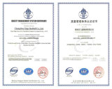 Sfere per cuscinetti dell'acciaio al cromo del CERT 52100 dello SGS/iso del campione libero