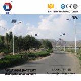 luz de calle solar de 15W 20W 25W 30W 40W LED/Lightaaa003