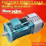 高/中または低速を持っている220V/50Hz構築の起重機の電気モーター