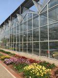 La palanca de efecto invernadero de vidrio de alta Multi-Span
