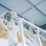 50-60 T/D는 밥 선반 또는 축융기/곡물 가공 기계를 완료한다
