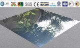 Los paneles compuestos de aluminio del espejo negro (BMC 06)