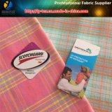 Tela de nylon, tela teñida hilado de nylon con el Spandex para la camisa de las mujeres