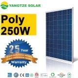 Garantia de 25 anos Módulo de painel solar PV de 250wp