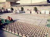 Natürliche Poliermarmorsteinfußboden-Fliese für Bodenbelag/Wand
