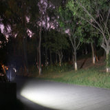 20W 태양 LED 플러드 빛 원격 제어 거리 정원 점화